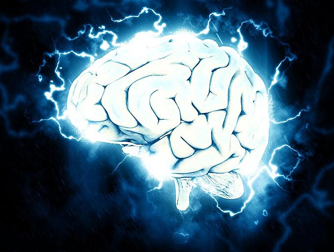 Der autoaktive Verstand